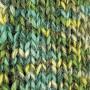 Järbo Raggi Sock Yarn 15146 Mint Twist