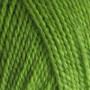 BC Yarn Semilla Unicolor ob112 Apple Green
