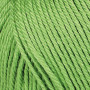 Järbo 8/4 Yarn Unicolor 32084 Apple Green