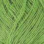 Ístex Einband Yarn 1764 Vivid green